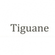 Tiguane