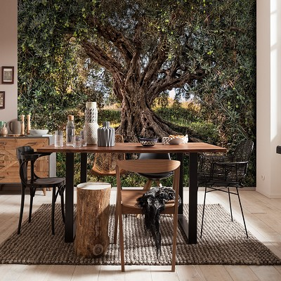 Mural Olive Tree National Geographic en Donurmy